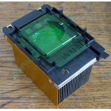 Радиатор HP p/n 279680-001 (socket 603/604) - Кострома