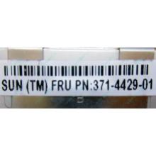 Серверная память SUN (FRU PN 371-4429-01) 4096Mb (4Gb) DDR3 ECC в Костроме, память для сервера SUN FRU P/N 371-4429-01 (Кострома)