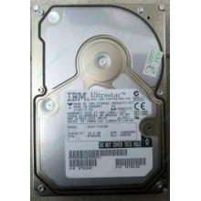 Жесткий диск 18.2Gb IBM Ultrastar DDYS-T18350 Ultra3 SCSI (Кострома)